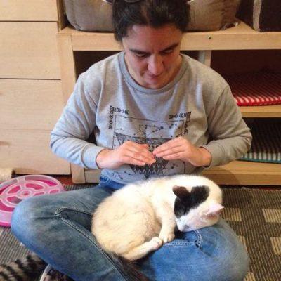 rosa a administrar reiki ao animal gato tim, numa associação. Rosa Teate